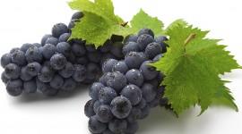 Grapes pic