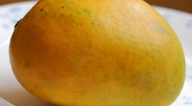 Mango free