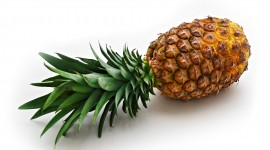 Pineapples Images