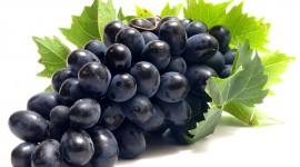 Grapes Download for desktop