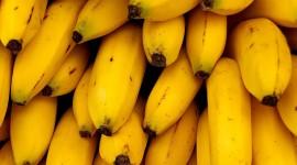 Bananas Iphone wallpapers