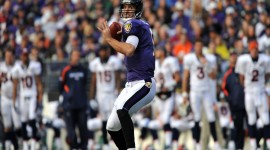 Joe Flacco Images