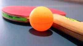 Ping Pong Pics