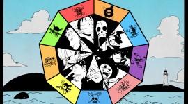 One Piece Widescreen