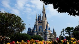 Walt Disney World free