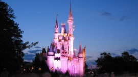 Walt Disney World pic