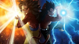 Son Goku Free download