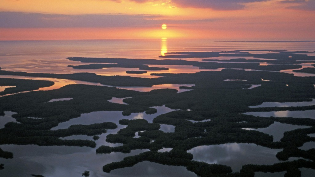 Everglades wallpapers HD