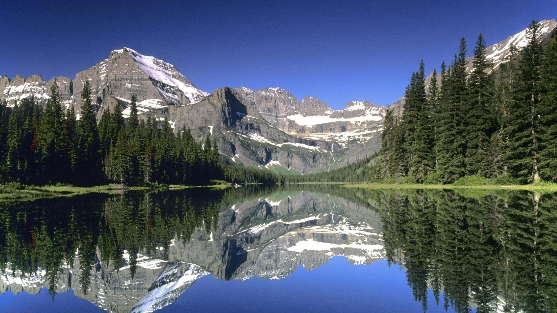 Montaña Nevada Hd: Glacier National Park Wallpapers High Quality