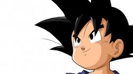 Son Goku Pics