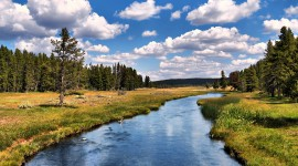Yellowstone National Park Pics