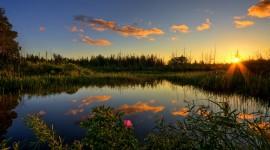 Everglades pic