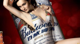 Budweiser High Definition