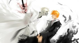 Bleach High resolution