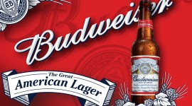 Budweiser Wide wallpaper