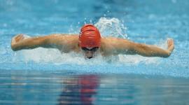 Swimming Download for desktop