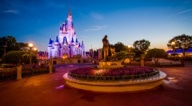 Walt Disney World Pics