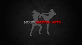 Mixed Martial Arts 4K