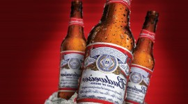 Budweiser for android