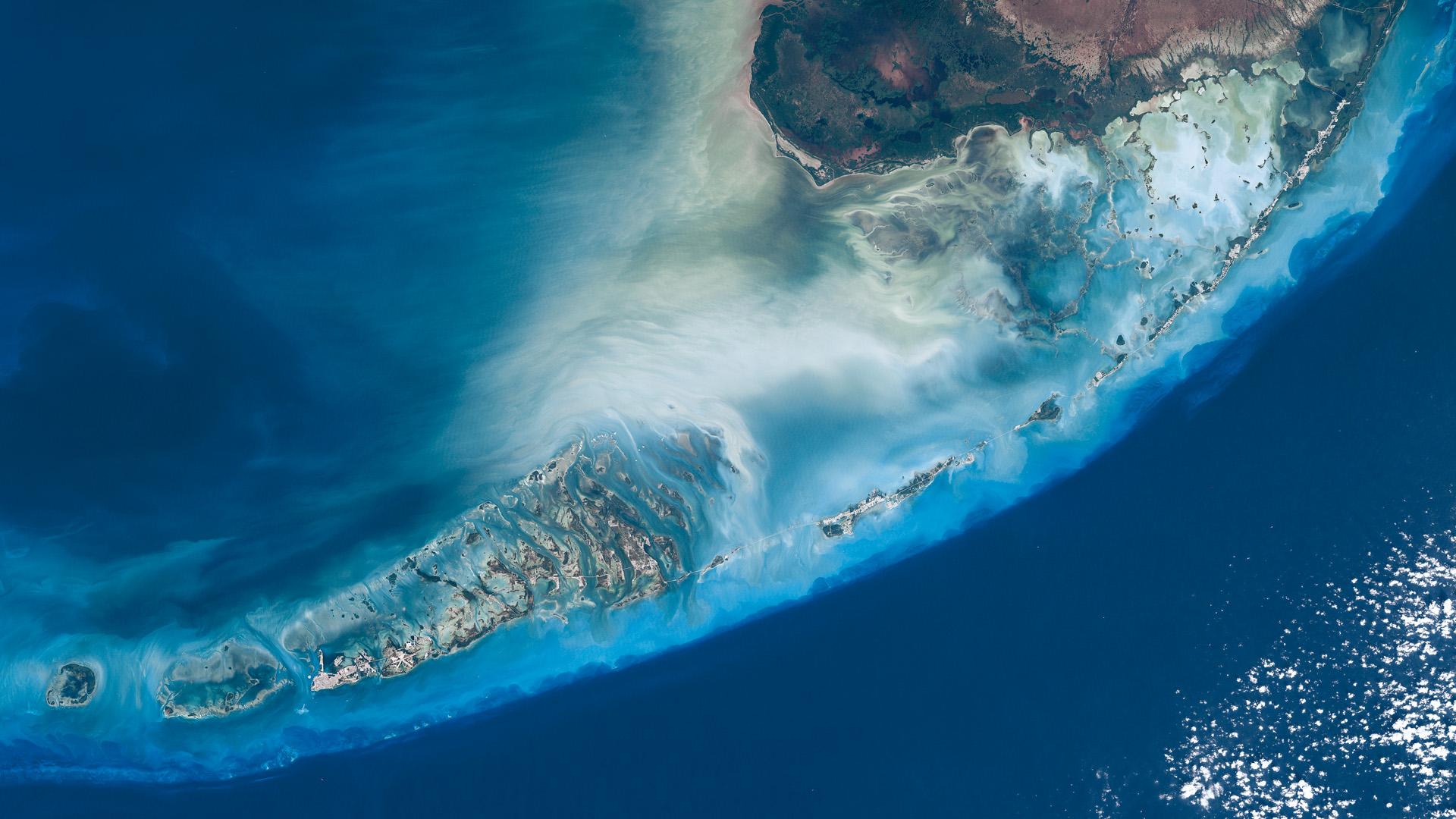 Florida coral reefs wallpapers high quality download free - Wallpaper florida keys ...