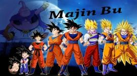 Son Goku HD Wallpaper
