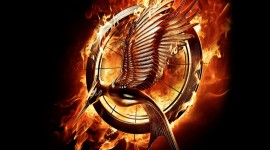 The Hunger Games background