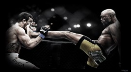 Mixed Martial Arts HD Wallpaper
