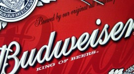Budweiser for smartphone