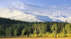 Yellowstone National Park Widescreen