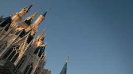 Walt Disney World Photos