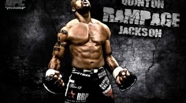 Mixed Martial Arts Images
