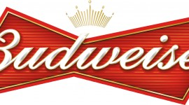 Budweiser For desktop