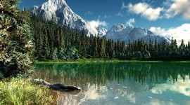 Rocky Mountains Free download
