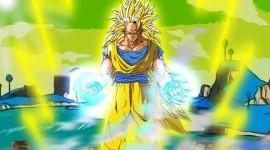 Son Goku Photos