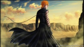 Bleach Widescreen