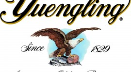 Yuengling for smartphone