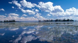 Yellowstone National Park pic