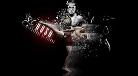 Mixed Martial Arts HD