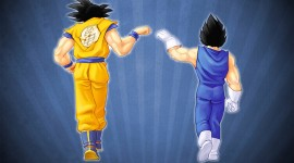 Son Goku High Definition