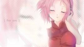 Sakura Haruno Wide wallpaper