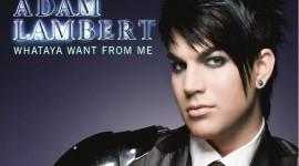 Adam Lambert Pics