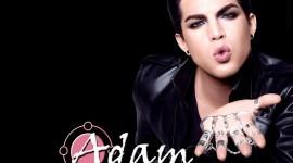 Adam Lambert free