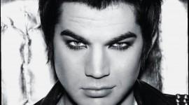 Adam Lambert Free download