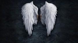 Angel HD