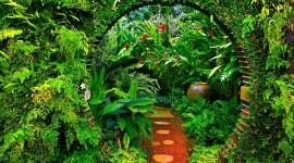 Garden Free download