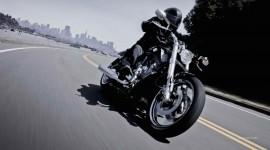 Harley Davidson free