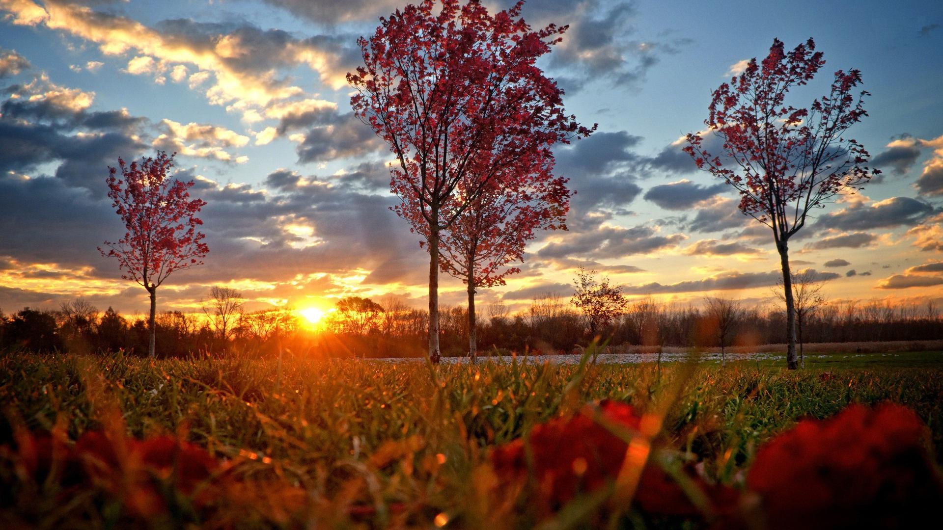 High Resolution Fall Wallpaper: Autumn Wallpapers High Quality