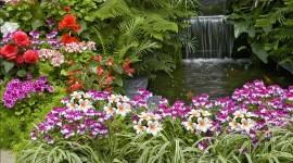 Garden for smartphone