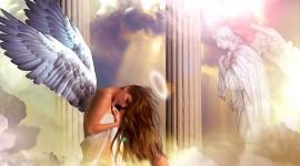 Angel High resolution