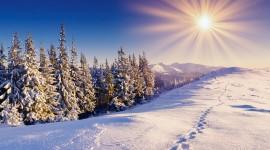Winter High resolution